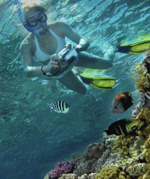Calypso Reef Charters - Tourism Bookings WA